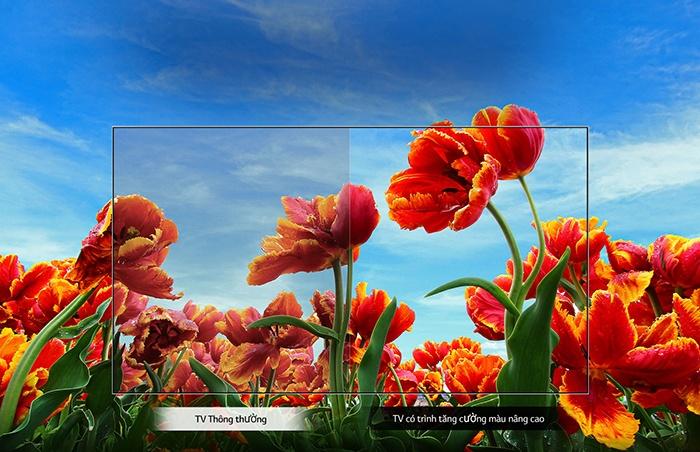 Màu sắ tinh xảo của Tivi LG 32LM630BPTB